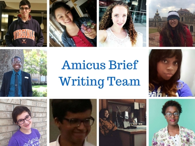 Amicus Brief Writing Team